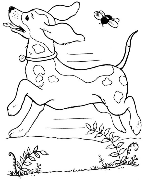600x734 Dog Running Wild With A Bee Coloring Page Color Luna