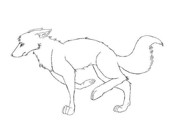 600x450 Fox Lineart By Vivalaniccals