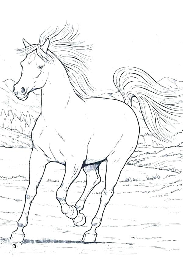 600x847 Realistic Horse Coloring Pages 59 Together With Horses Coloring