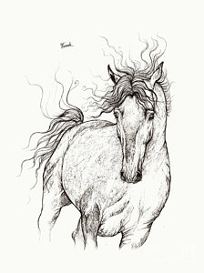 224x300 Running Horse Drawings Fine Art America