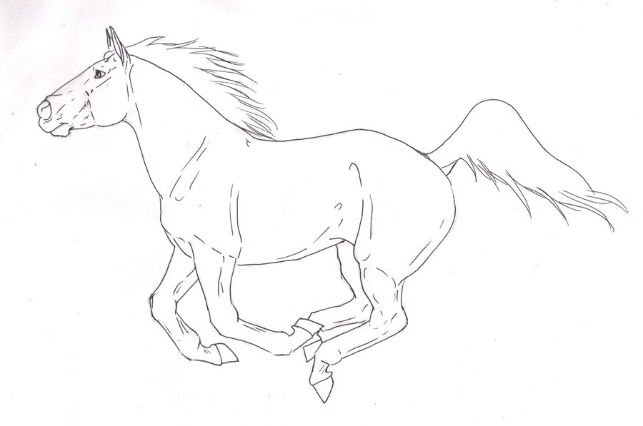 900x597 Running Horse Line Art By Lustedmoonshine