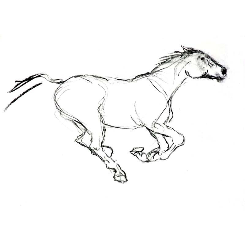 800x800 Running Horse Body Art Running, Body