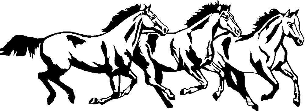 1000x366 Three Running Horse Decal