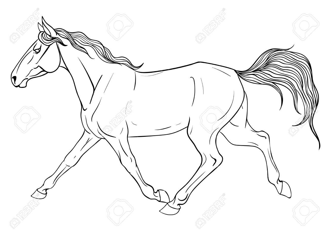 Running Horse Line Drawing at GetDrawings.com | Free for personal ...