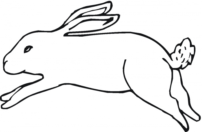 700x458 Hare 25 Embroider Jack Rabbit, Printable Crafts