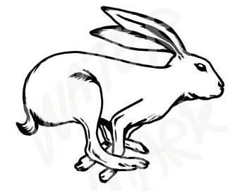 340x270 Jumping Hare Etsy