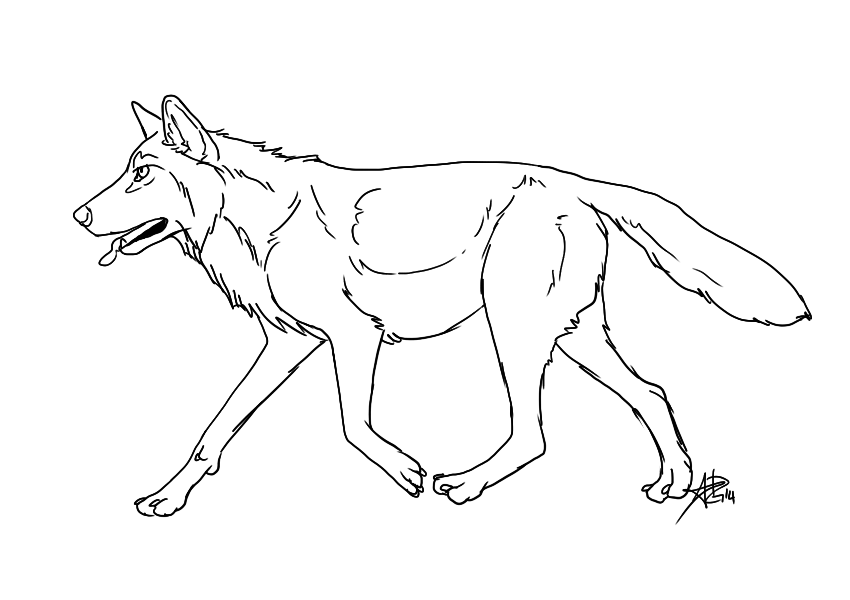 850x600 Running Wolf Lineart 2014 Free By Dolphin Adopt