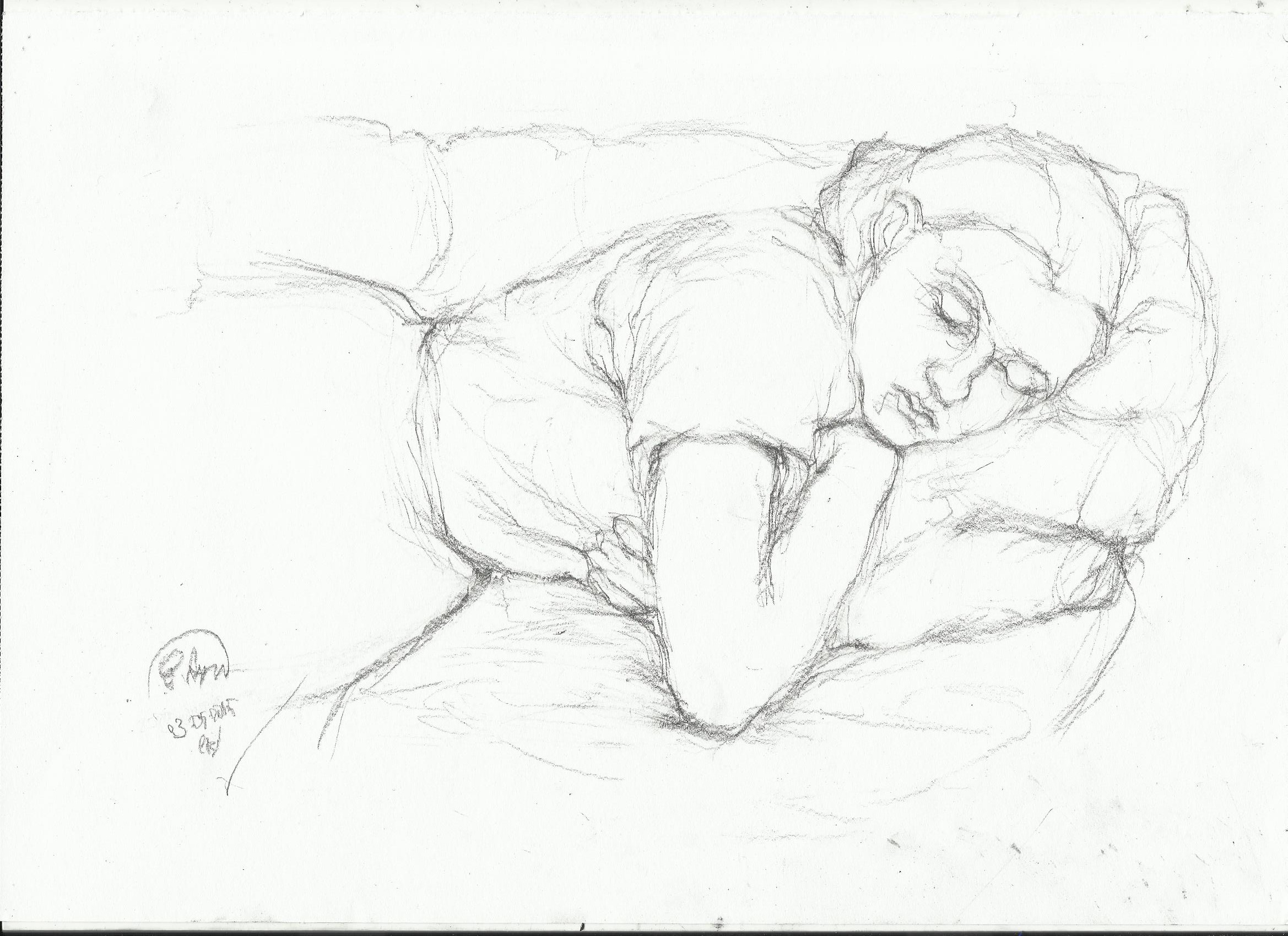 2338x1700 Sleeping Woman Drawing Nightwithdeer