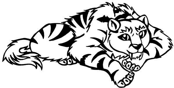 600x302 Genuine Saber Tooth Tiger Coloring Pages A Cartoon Illustration