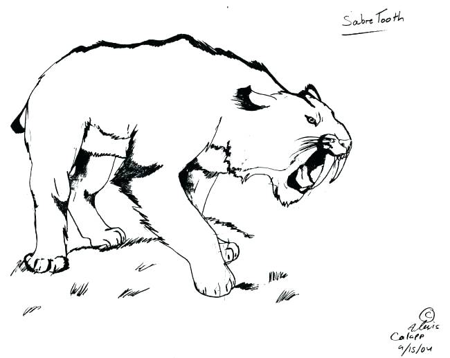 sabertooth tiger coloring pages - photo#33