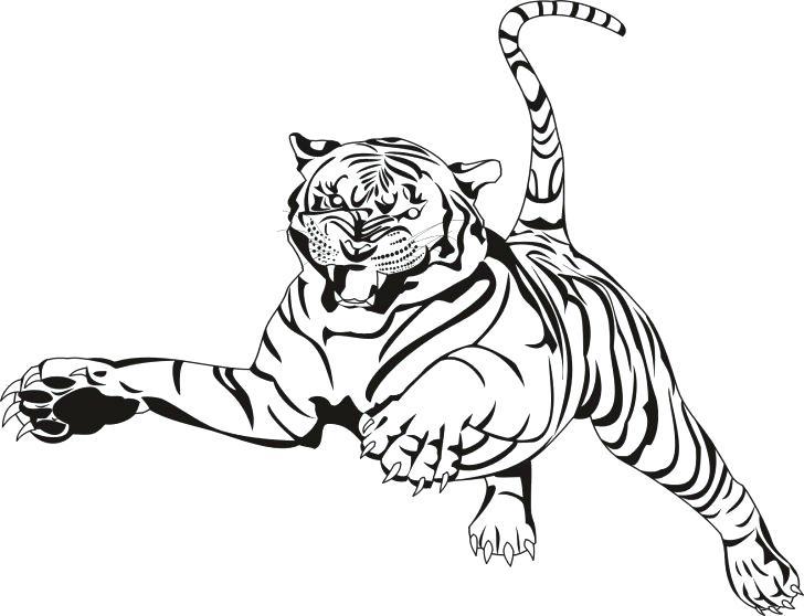 Sabre Tooth Tiger Drawing at GetDrawings | Free download