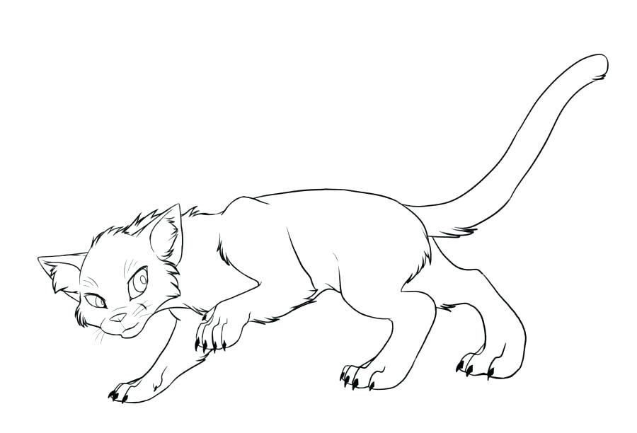 900x612 Warriors Cats Coloring Pages Warrior Cat Coloring Pages