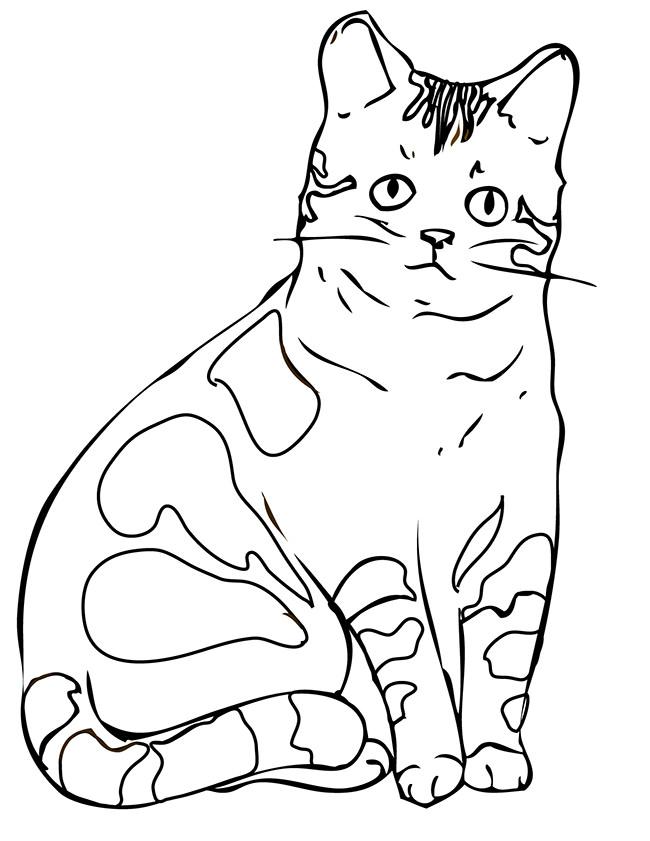 650x841 Cat Shape Template