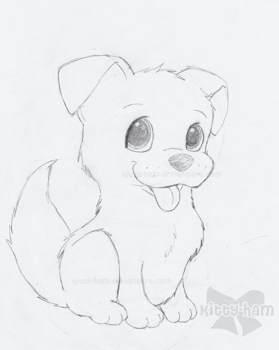 900x1129 Puppy Sketch By Kitty Ham