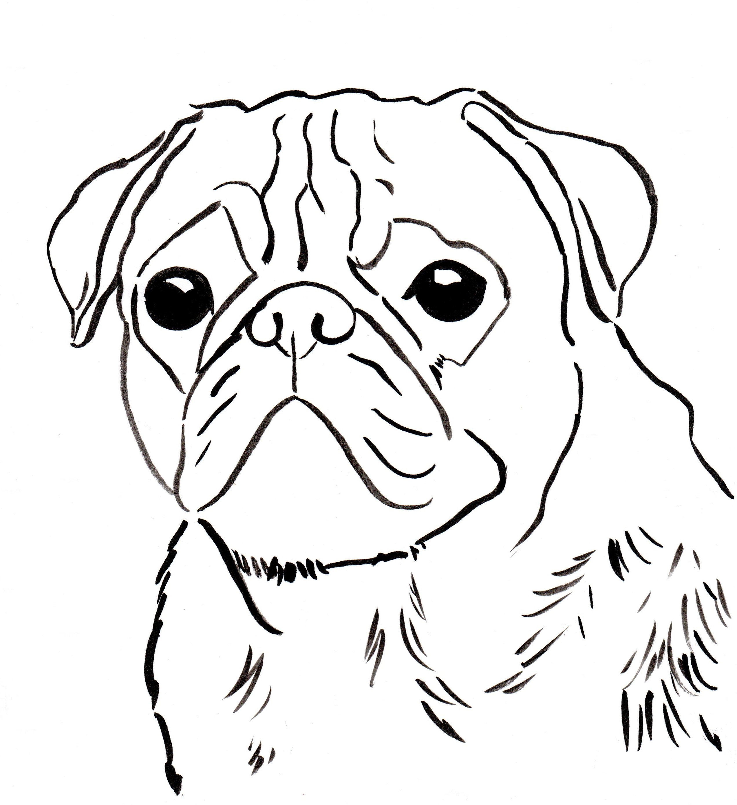 Sad Puppy Face Drawing at GetDrawings | Free download