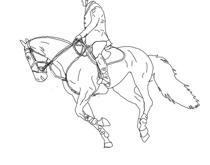 736x578 Free Line Art Under Saddle More Artists Like Horse