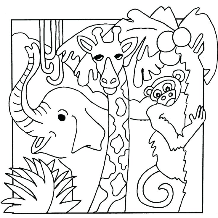 736x737 Animal Coloring Pages Free Wonderful Ocean Animals In Colouring