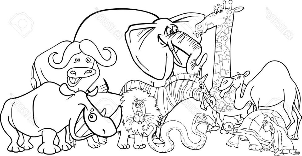 974x503 Coloring Pages Drawing Safari Animals Drawing In Colour Safari