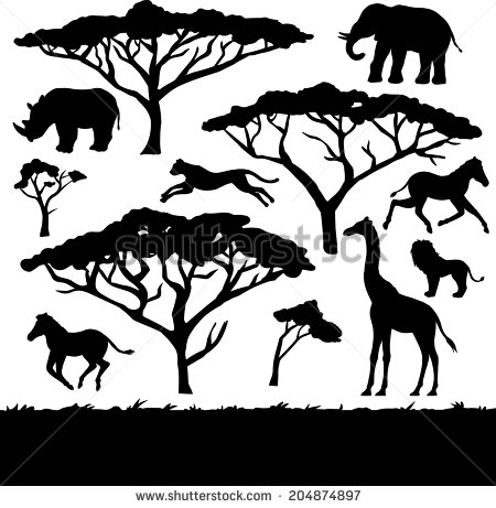 Safari Tree Drawing