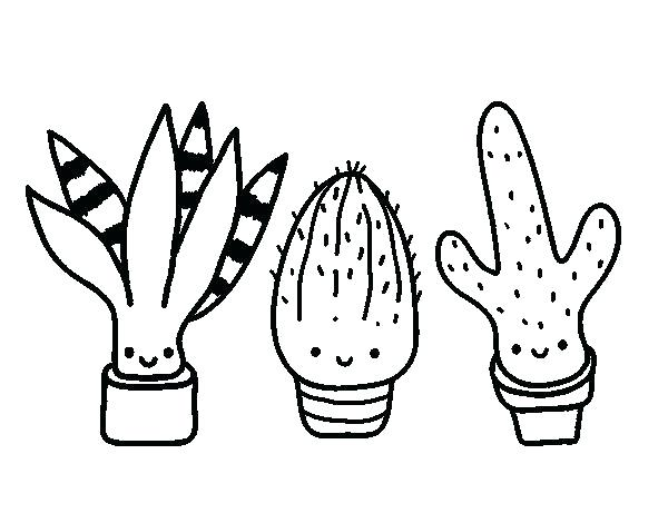 600x470 Cactus Coloring Bet Coloring Pages Cactus Coloring Pages Bet
