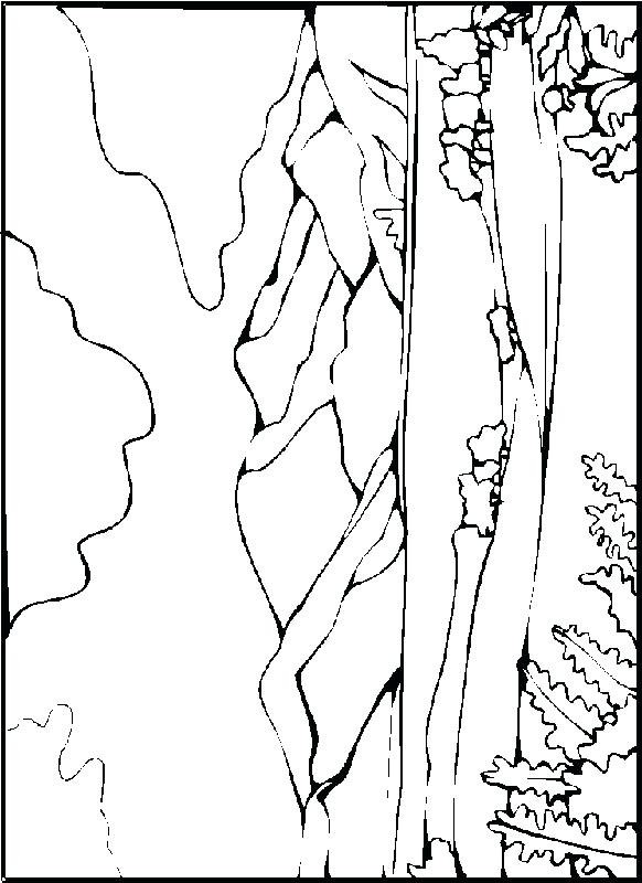 desert landscape coloring pages printable - photo#14