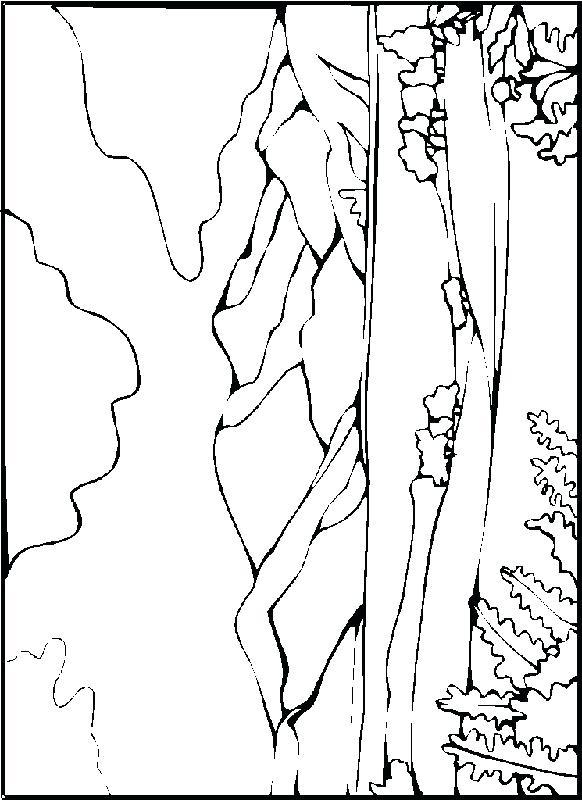 Sahara Desert Drawing at GetDrawings | Free download
