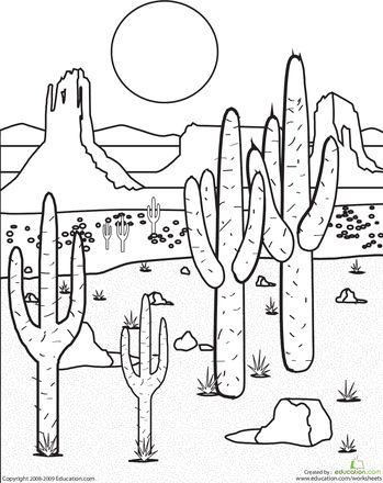 349x440 25 Best Desert Biome Images On Deserts, Desert Animals