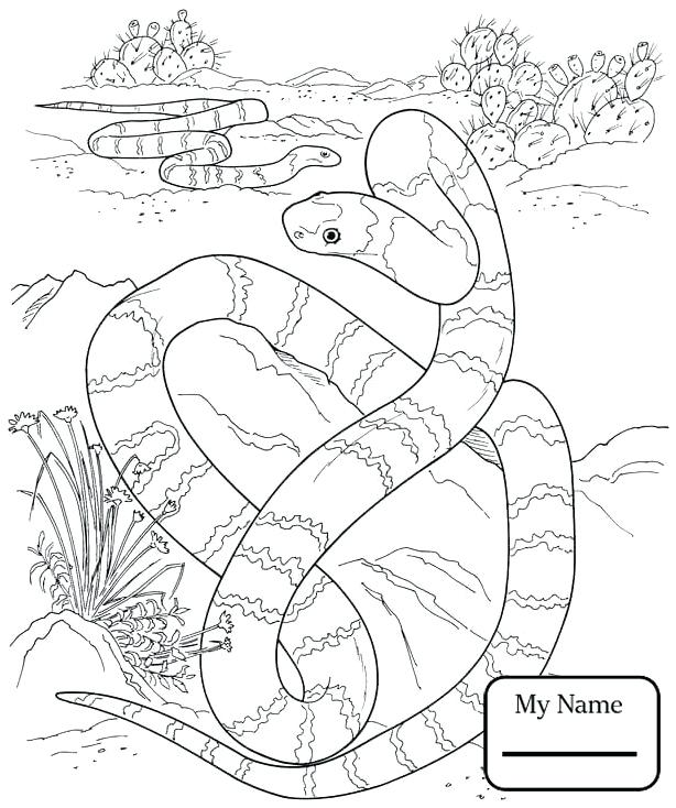 614x734 Desert Coloring Pictures Camel On The Desert Coloring Page Sahara