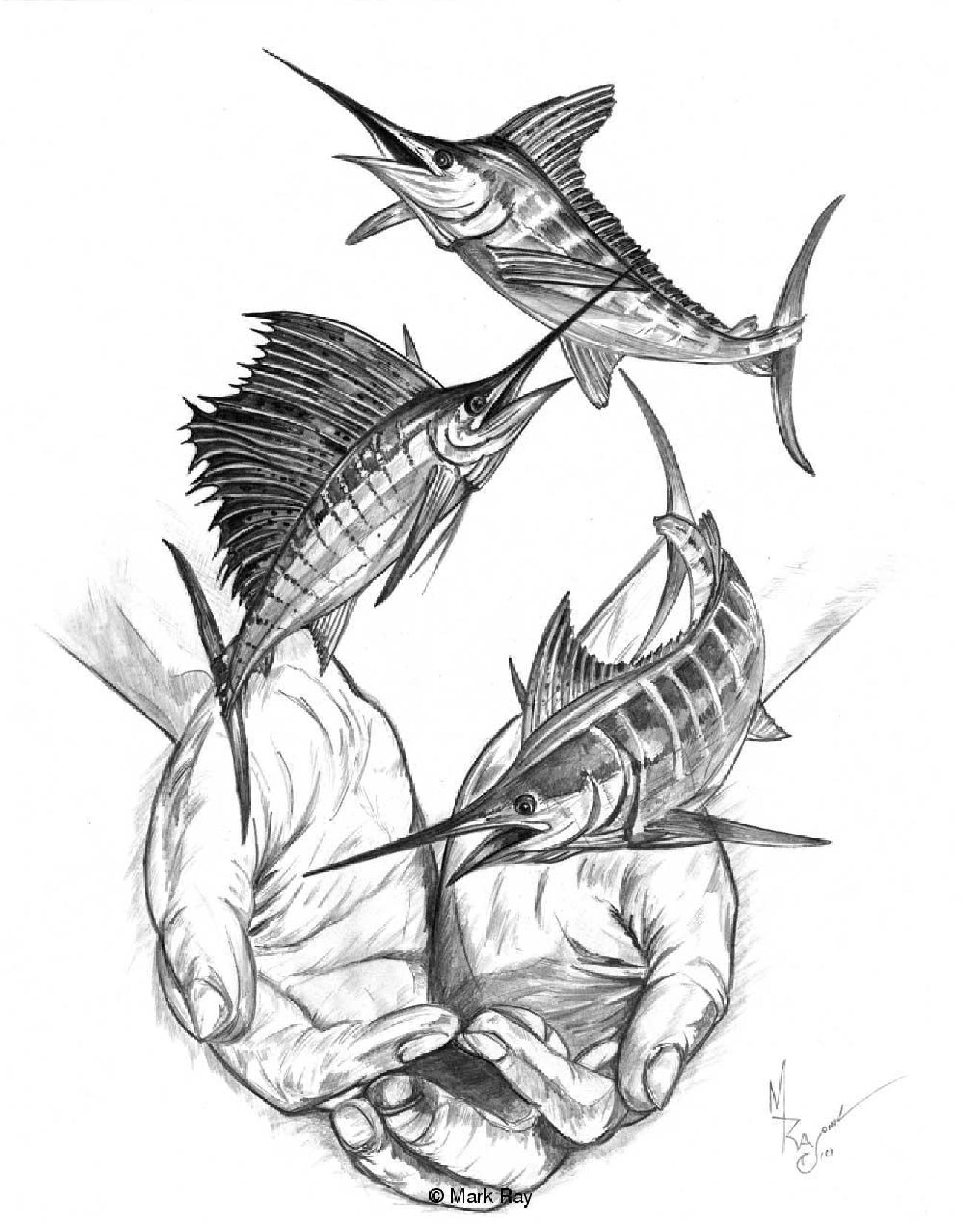 1300x1662 Pencils Salt Water Game Fish Paintings By