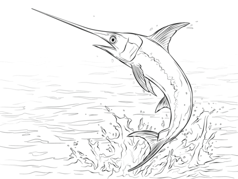 480x360 Swordfish Jumping Out Of Water Coloring Page Free Printable
