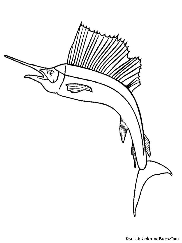 768x1024 Tropical Fish Coloring Pages