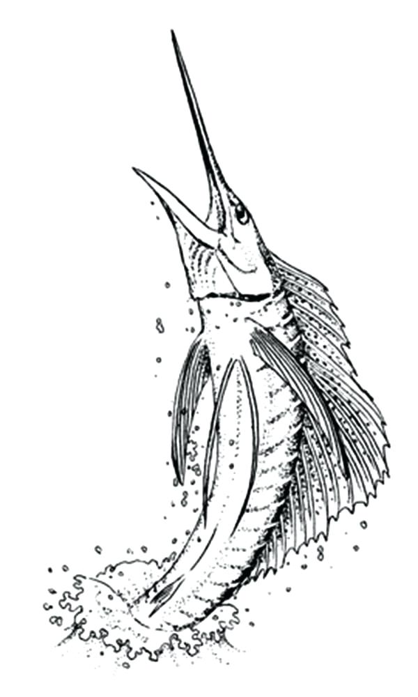 600x1000 Swordfish Coloring Page Synthesis.site