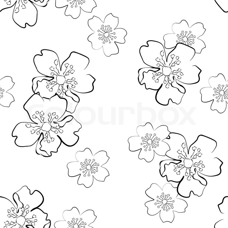 800x800 Seamless Background With Isolated Sakura Flowers In Sketch Style