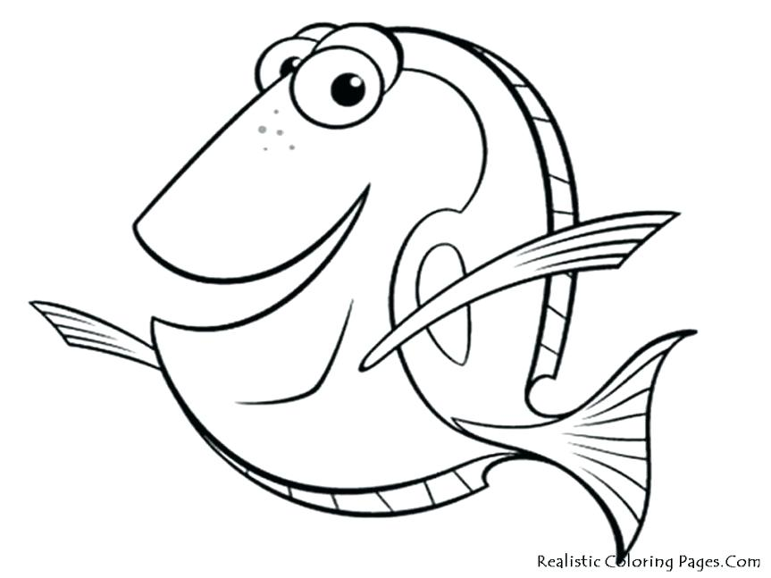 Salmon Drawing at GetDrawings.com | Free for personal use Salmon ...
