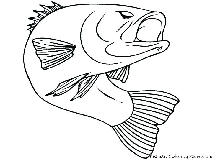 728x546 Salmon Coloring Pages Printable Fish Chinook Sal On Cross
