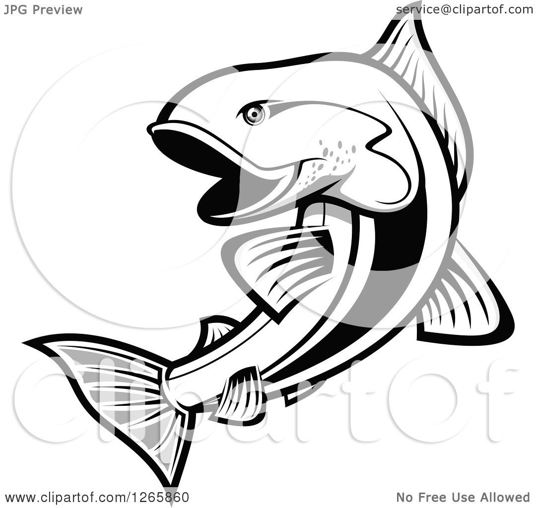 1080x1024 Clipart Of A Black And White Salmon Fish
