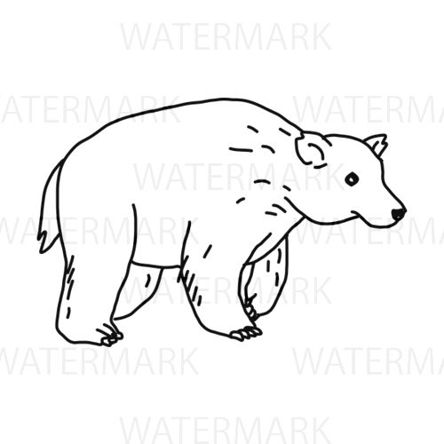 500x500 Animal Cute Bear Line Drawing Mountain Salmon Fur Cute Aggressive