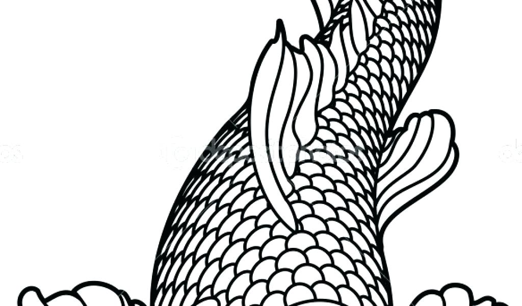 1024x600 Realistic Fish Coloring Pages Fish Color Pages Red Fish Blue Fish