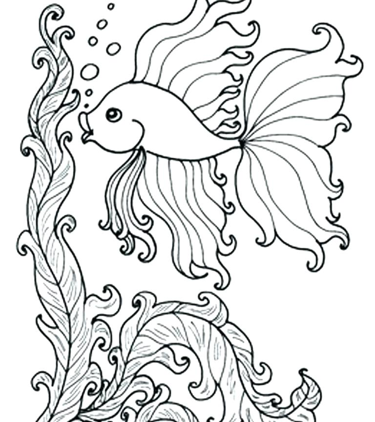 768x864 Realistic Fish Coloring Pages Marine Coloring Pages Marine Corps