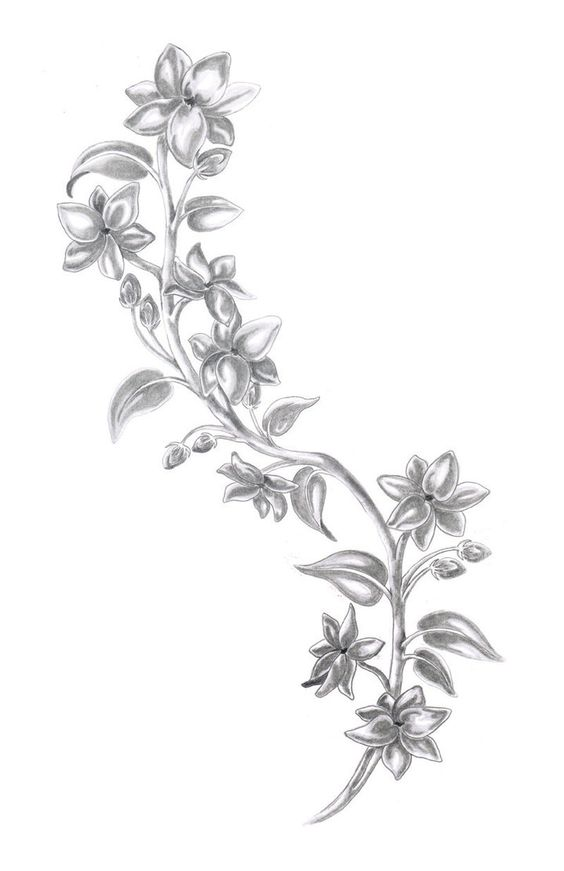 564x871 Flower Drawing In Text Best Drawing Sketch Ideas Drawing Ideas