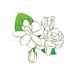 320x320 Fresh Jasmine Flowers With Lotus Flowers Garland Stock Vector
