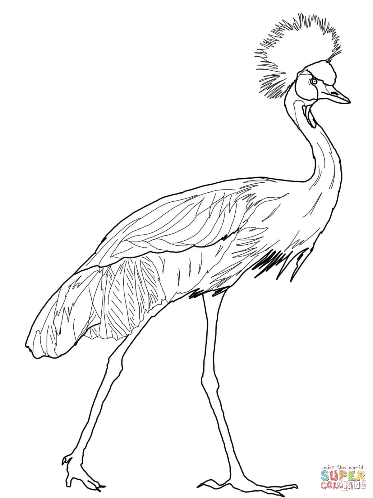 1200x1600 Black Crowned Crane Coloring Page Free Printable Coloring Pages