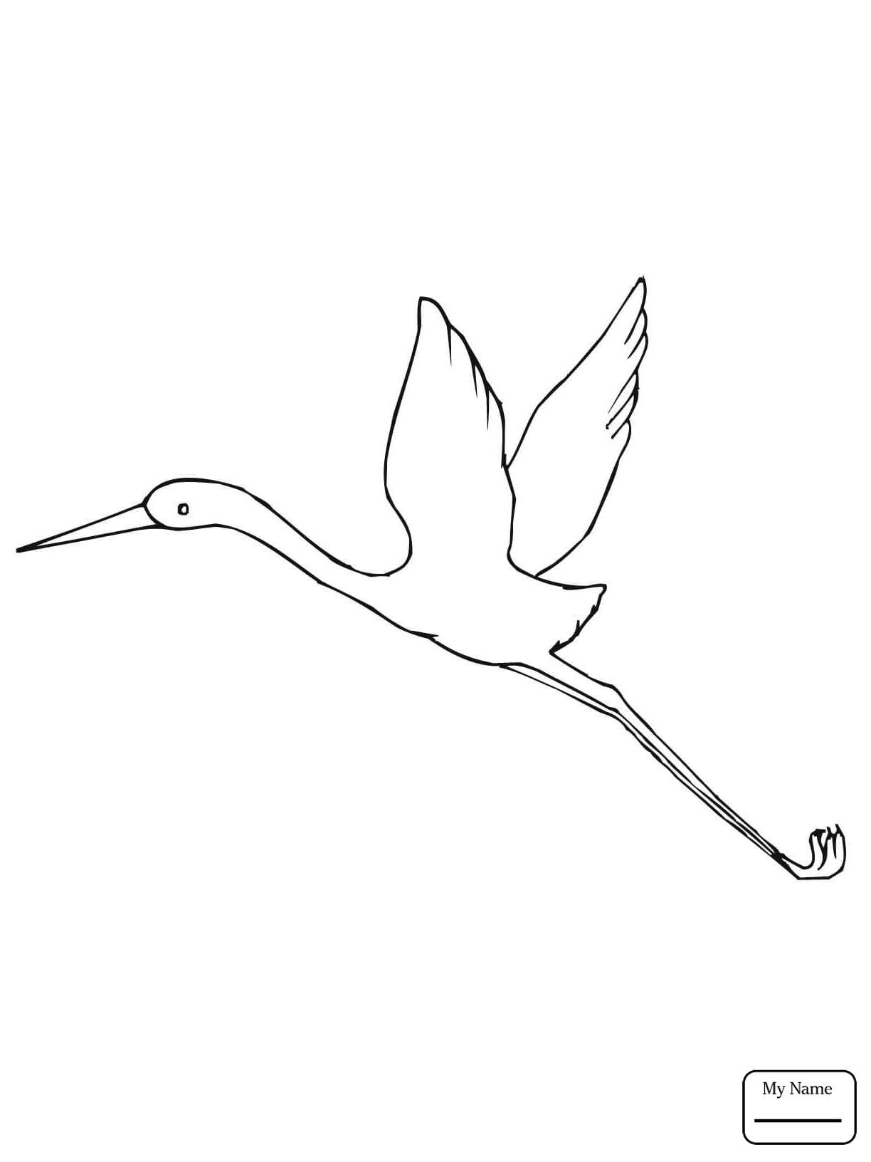 1224x1632 Coloring Pages Four Sandhill Cranes Birds Cranes Azcoloring.club