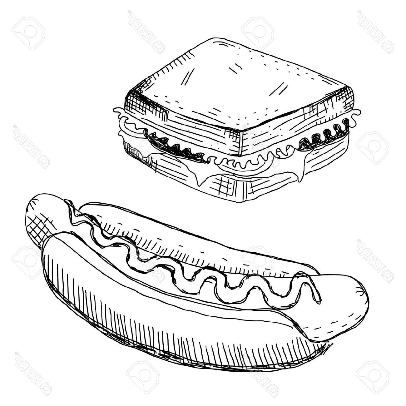 1300x1300 Best Sandwich And Hot Dog Stock Vector File Free