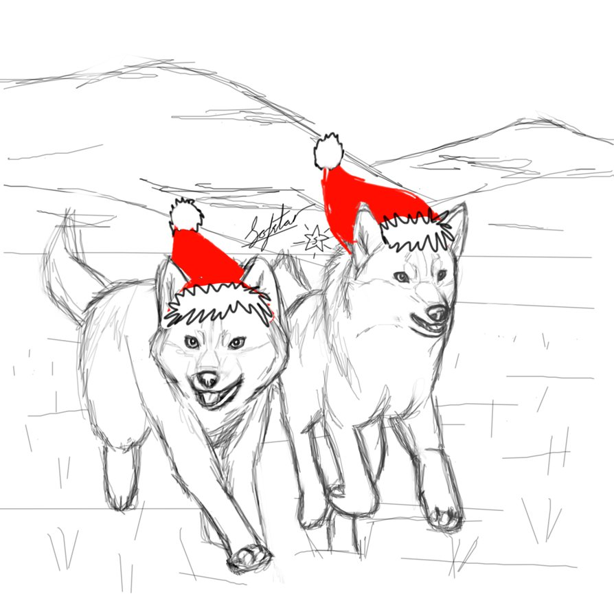 894x894 It's Christmas! (Wolf Sketch Wip + Santa Hats!) By Sofstar