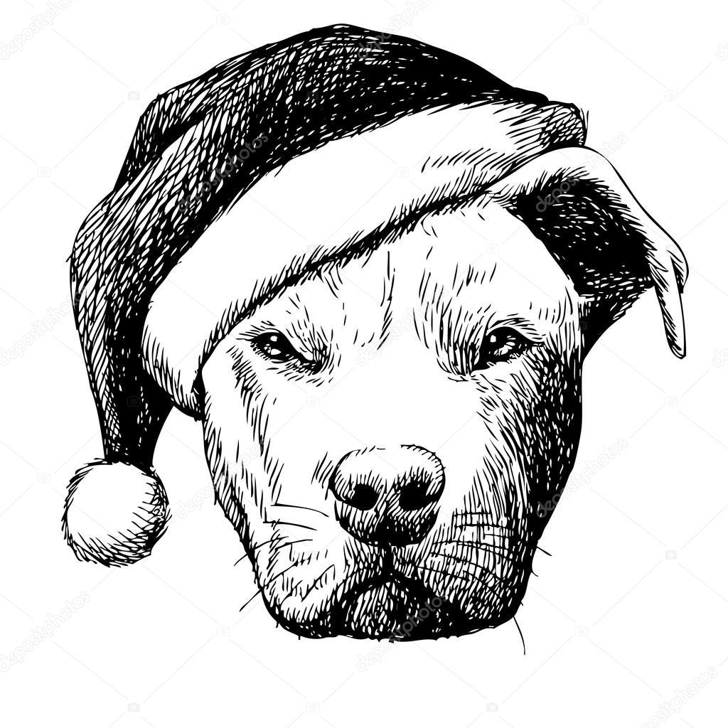 1024x1024 Pitbull Dog With Christmas Santa Hat Stock Vector Simplebe