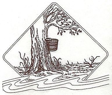 385x325 Maple Tree With Bucket For Maple Syrup Production Ready Artwork