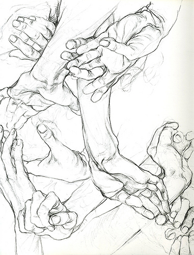 381x500 Sarah Simblet, Hands Art Boards, Sketches And Drawings