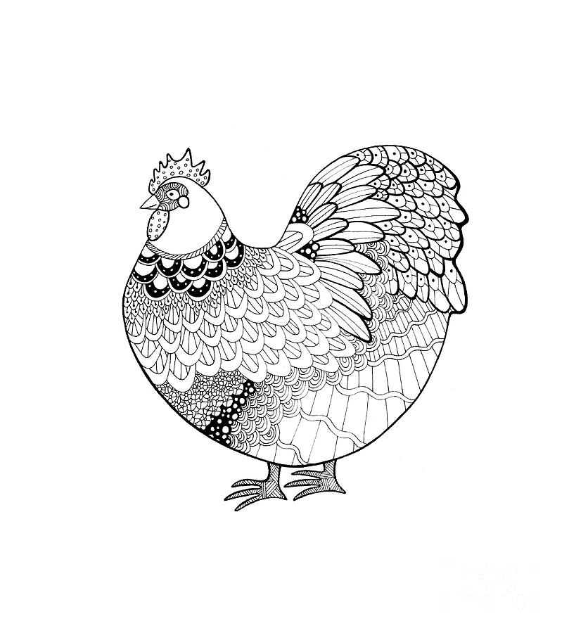 809x900 Zentangle Inspired Orpington Chicken Drawing By Sarah Rosedahl