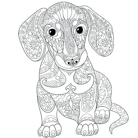 474x474 Dachshund Coloring Pages Dachshund Dog Coloring Page Dachshund